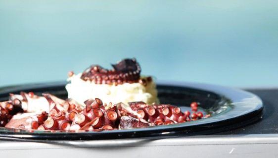Seafood Medium Round Glass Platters