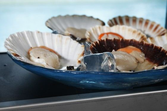Seafood Presentation Large Glass Bowls